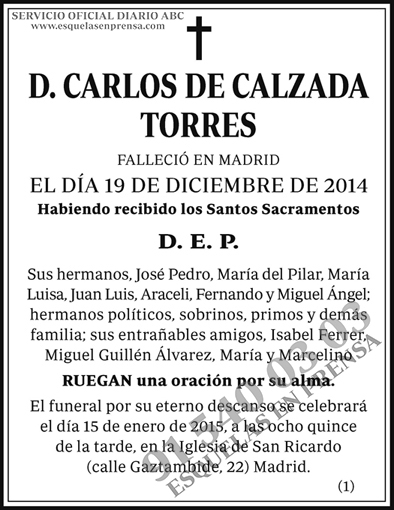 Carlos Calzada Torres
